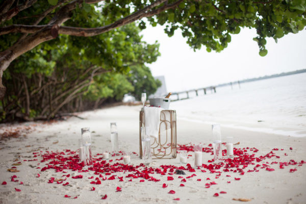 Champagne and Rose Pedals on The Beach | 59&Bluebell Weddings and Events
